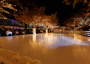 Ice skating with dinner at Lake Zurich