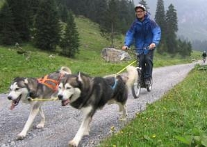 Scooter trips with huskies