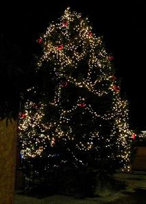 Lustiges Weihnachtsessen.Lustiges Weihnachtsquiz Durch Die Berner Altstadt Team Events