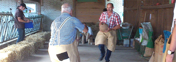 Country Fun games for large groups berne
