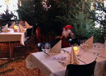 Christmas dinner in the pine forest