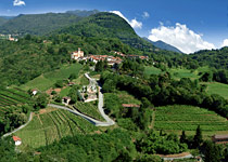 Wine and gourmet journey in the Ticino