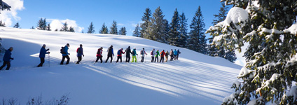 Snow shoe tour with an avalanche expert
