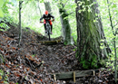 Guided single trail e-bike tour Emmental