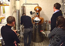 Gin- oder Absinth-Workshop