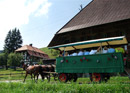 carriage ride emmental with dinner